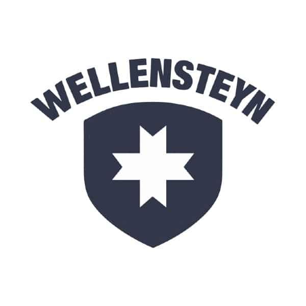 Wellenstein Logo